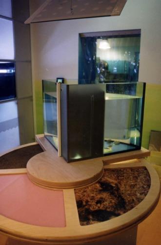 Museo della riserva di Miramare_2