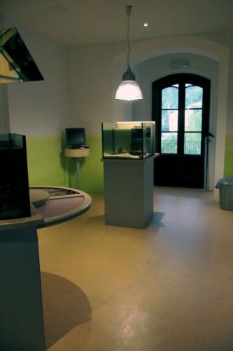Museo della riserva di Miramare_10