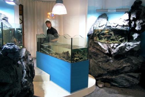 Museo della riserva di Miramare_11